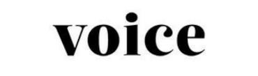 Voice Kassel Logo